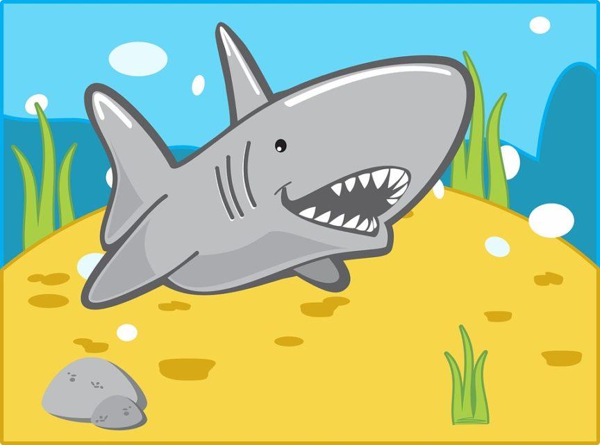 Baby Shark Song Lyrics 5 Best Versions And Videos Plus